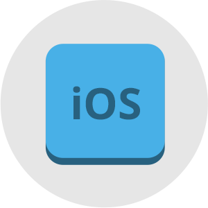 How much does an iOS icon cost?